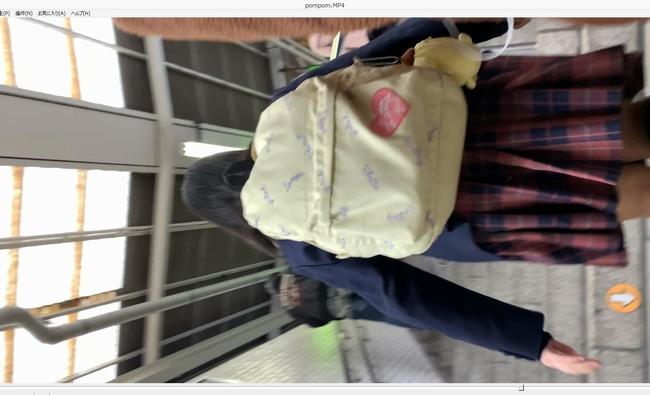 pcolle たろいも 小柄なjkの見た目通りの綿パンに急接近!!【4K】