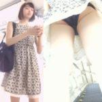【Pcolle きんぴらさん レビュー】[★新作][★顔出し]パンチラ盗撮 かわいい女子大生 紺色パンツが風チラで丸見え